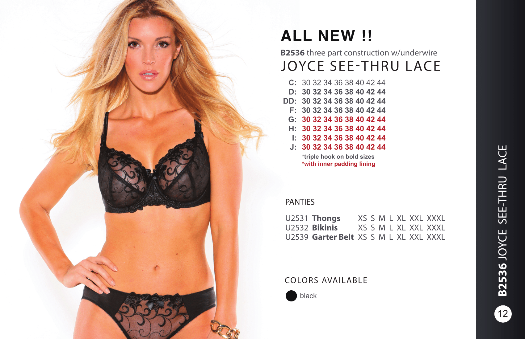 Joyce See-Thru Lace